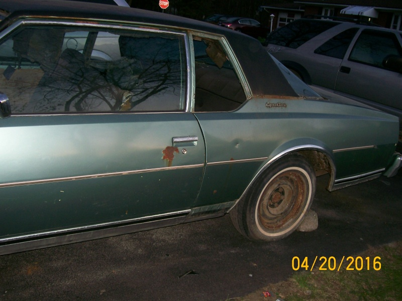 **FREE**  77 Caprice Coupe  **FREE** 100_2267