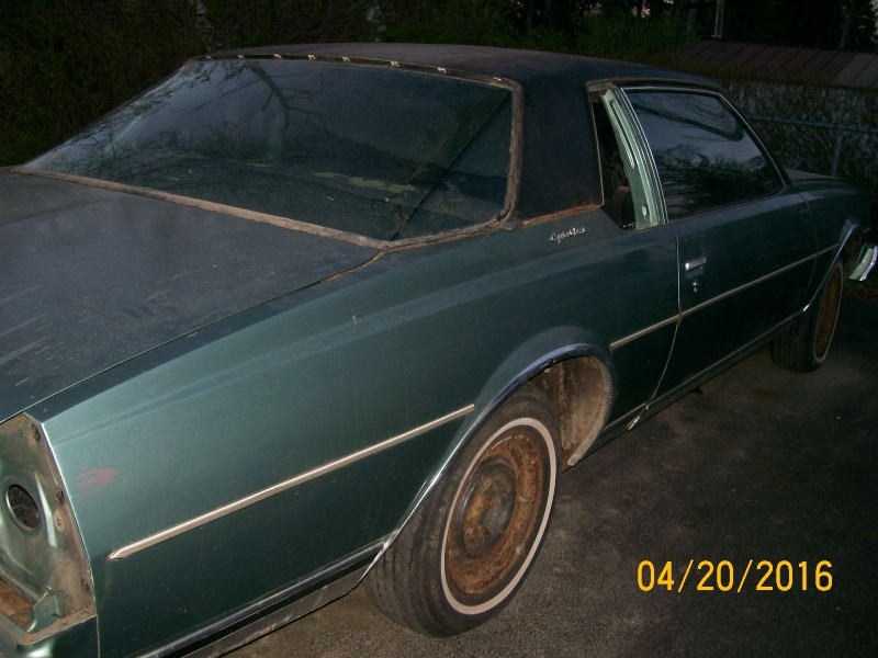**FREE**  77 Caprice Coupe  **FREE** 100_2274