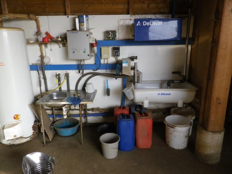 Exploitation Caprine laitière de mes parents Imgp3220