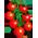 Habitat Escargot => Bave d'Escargot Cherry11