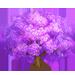 Vous cherchez un arbre ? Venez cliquer ici !!! Jacara16