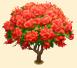Vous cherchez un arbre ? Venez cliquer ici !!! Sans_268