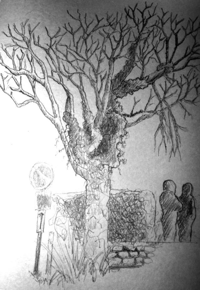 Un dessin par jour, qui veut jouer? - Page 4 Arbre-10