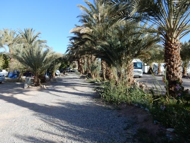 [Maroc Camp/Dernières nouvelles] Infos sur un nouveau camping à TATA ???? 59_cam10