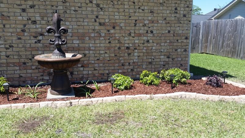 Ashleigh's Gardening (mis)Adventures 2014-2016 20160412