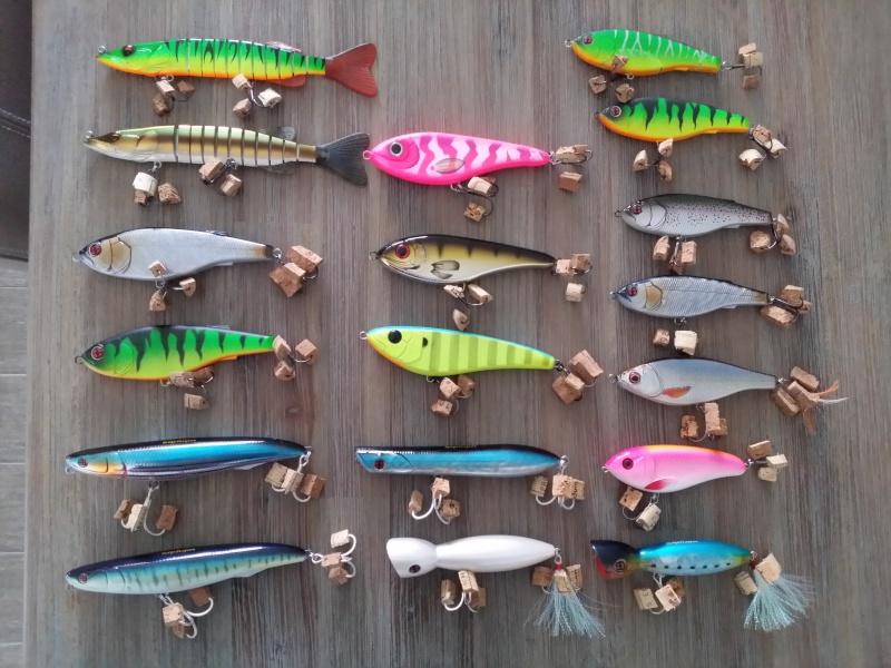 Présentation ED FISHING 20160410
