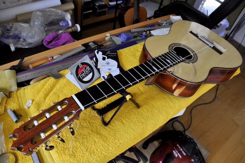 Construire sa guitare ... et plus si affinités avec le travail du bois - Page 4 _dsc0310