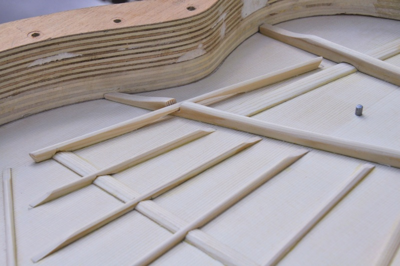 Construire sa guitare ... et plus si affinités avec le travail du bois - Page 4 _dsc0315