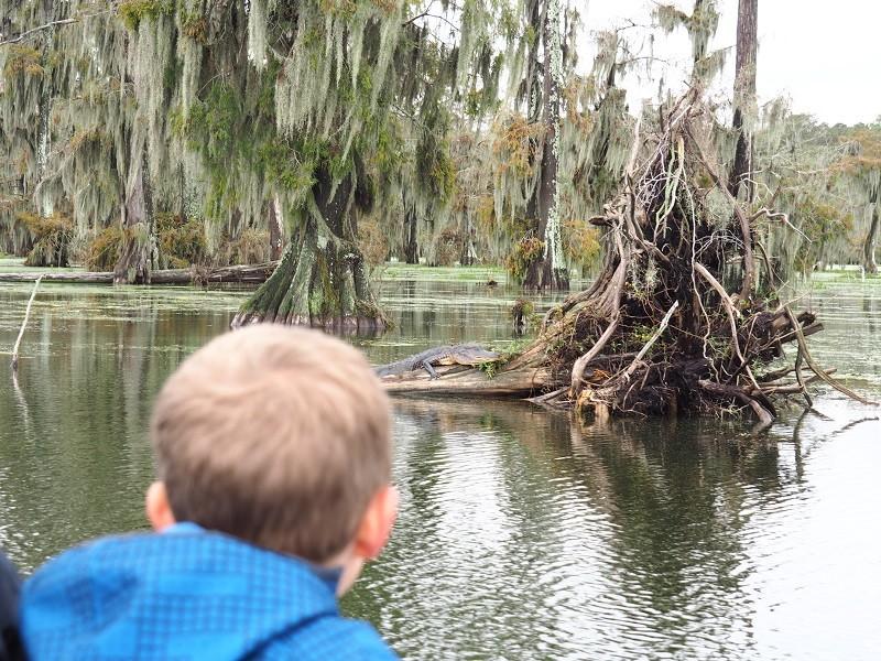 La Louisianne, coup de coeur 1_cami10