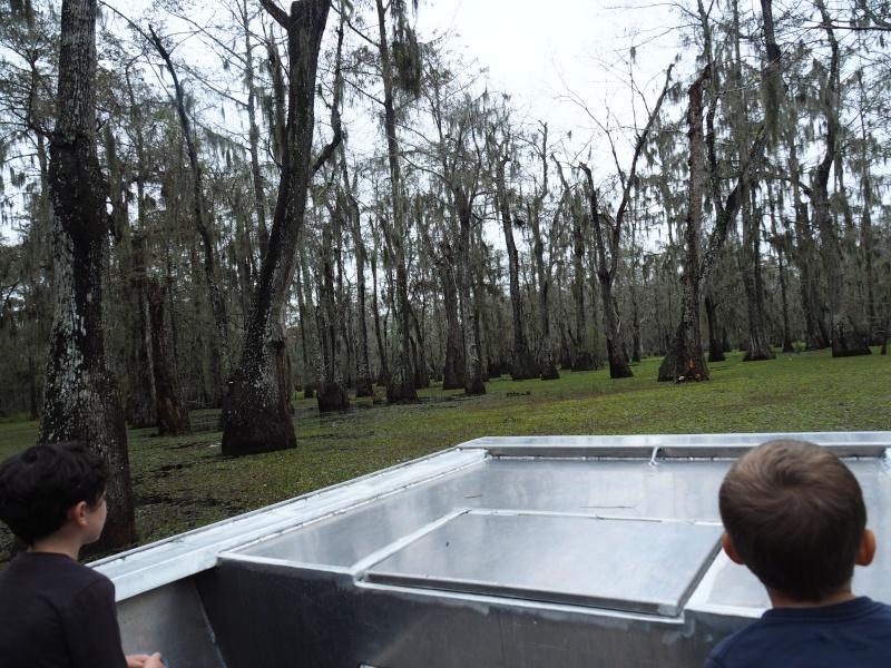 La Louisianne, coup de coeur Pb020810