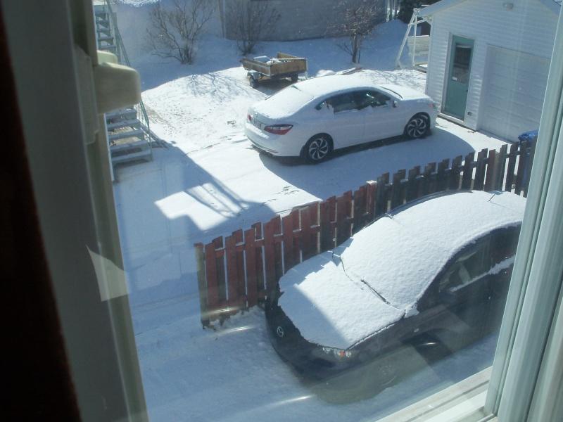 A va tu finir par partir, cette chr..... de neige là  101_0756