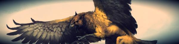 Honneur et Survie partie III - L'envolée Griffi10