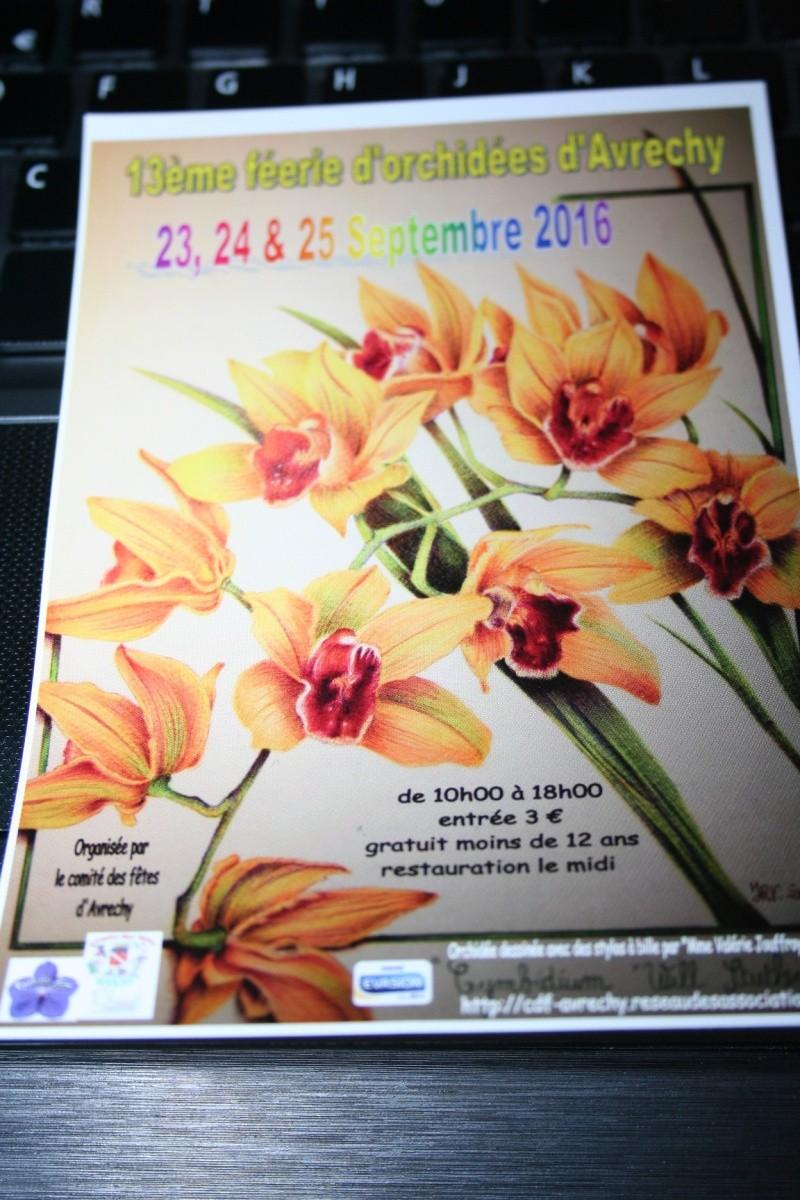 Dates des expos d'orchidées en 2016 - Page 5 Img_3036