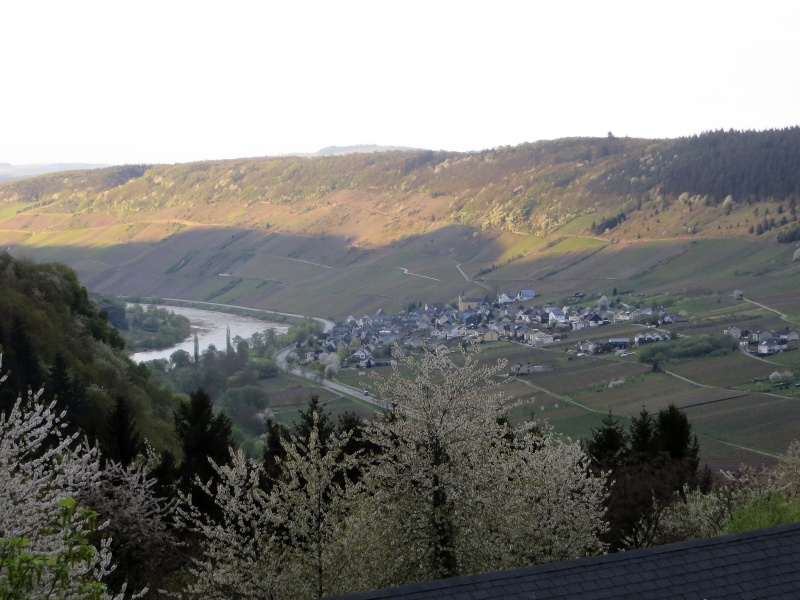avril 2016: de la Moselle au Rhin  - Page 9 Img_1211