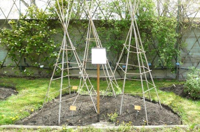 (63) Jardin botanique de La Charme-Montferrand  Contes10