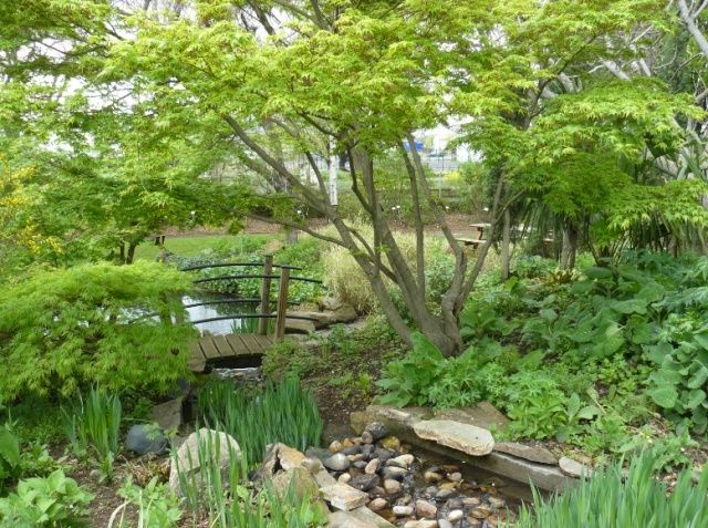 (63) Jardin botanique de La Charme-Montferrand  Humide10
