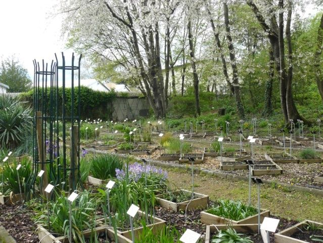 (63) Jardin botanique de La Charme-Montferrand  Syst_o10