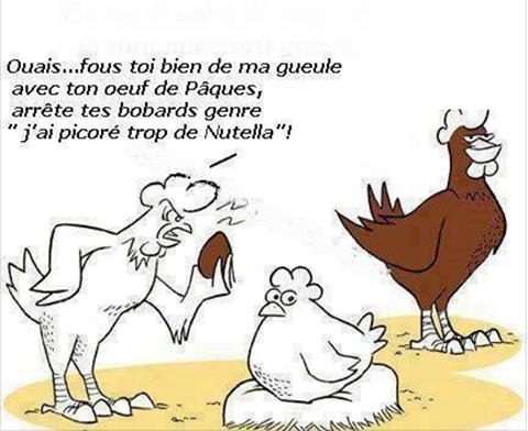 Humour en image du Forum Passion-Harley  ... - Page 39 12928110