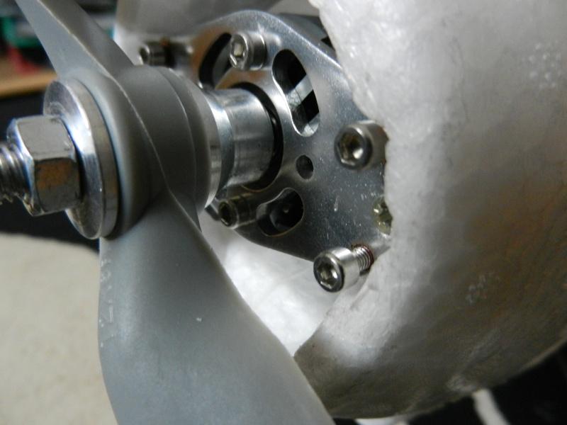 L'acromaster de Multiplex Dscn7912