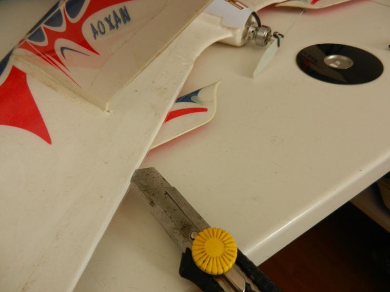 Ziggy Mini Wing ! - Page 3 Dscn8013