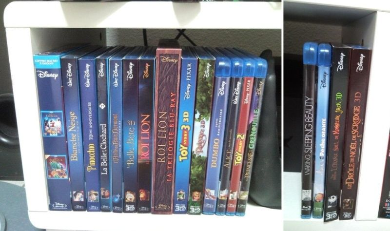 [Photos] Postez les photos de votre collection de DVD et Blu-ray Disney ! - Page 6 Sans_t10