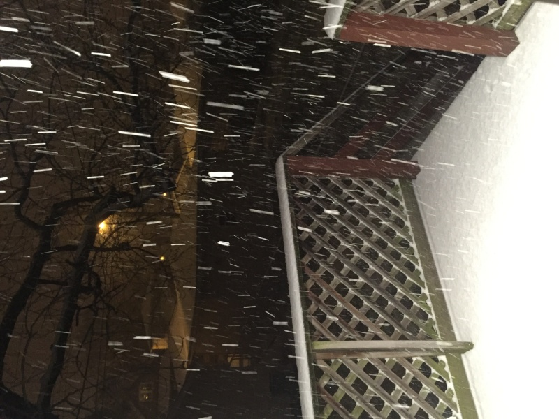 Looked out my back door last night. Image24