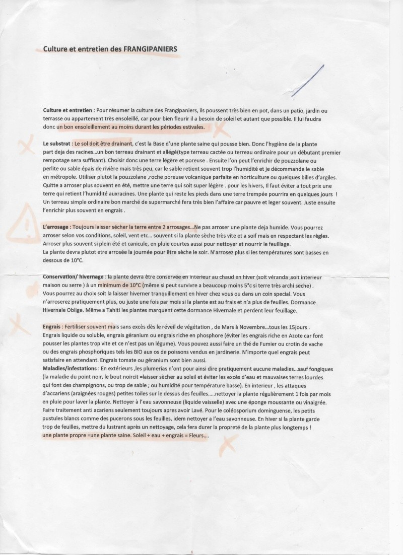 La culture des frangipaniers. Nos frangipaniers. - Page 4 Cultur10