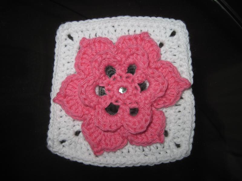 CAL (Crochet A Long) mystère Drops - The Meadow (la prairie) - Page 3 Img_6825