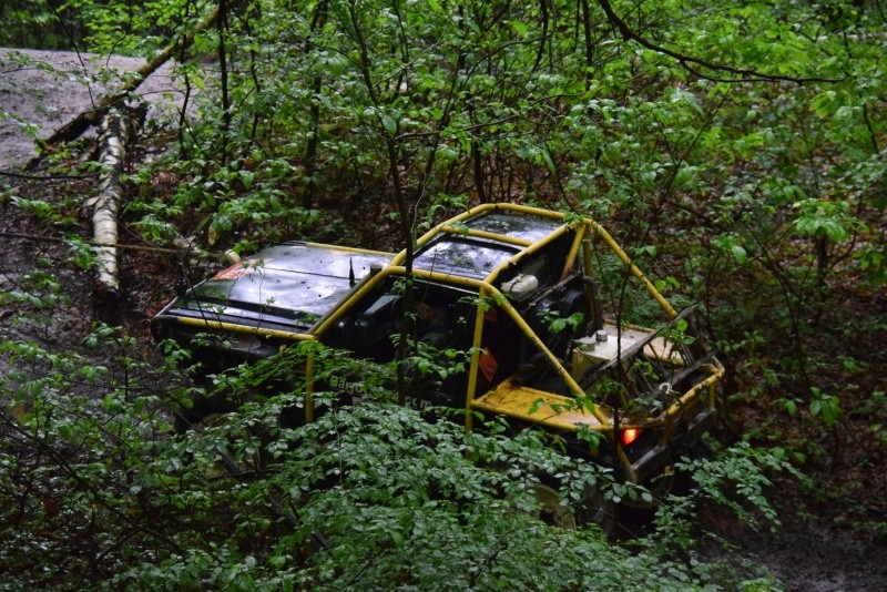 Le Forest-Hill 2016 Dsc_0016