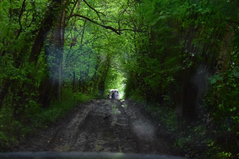 Le Forest-Hill 2016 Dsc_0113