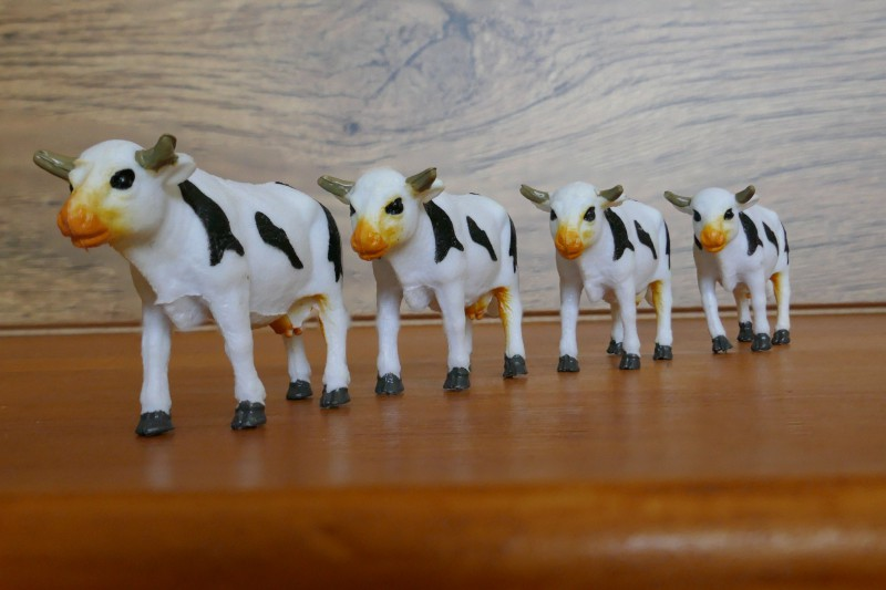 TZ100 - Oh les vaches !! Post Focus et empilage des photos Empila10