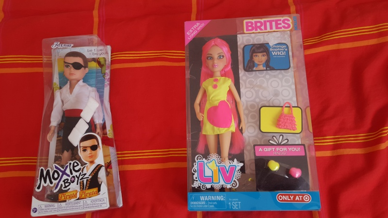 ma collection de barbie /bratz/disney et autres - Page 2 20160416