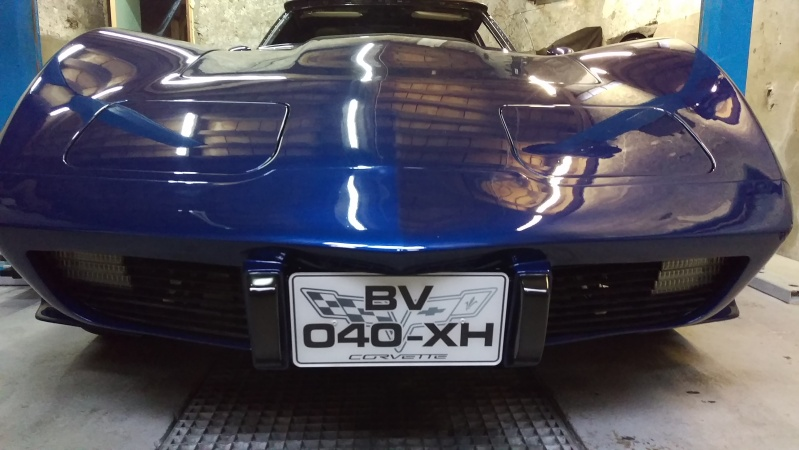 debut de la restauration de ma corvette c3 25eme - Page 10 Imag0313