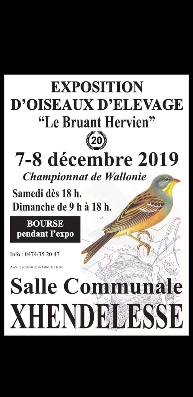 Expo-bourse Bruant Hervien 2019 [7-8 décembre 2019] Expo_b10
