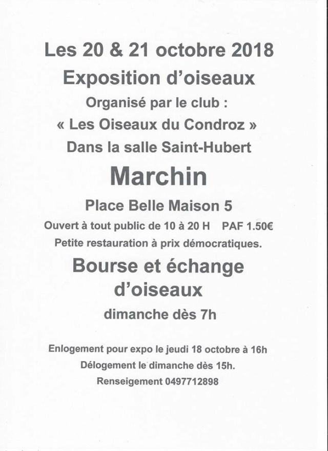 Expo-bourse Marchin (20 et 21 octobre 2018) Marchi10