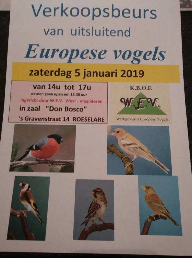 Bourse Roeselare [5 janvier 2019] Roesel10