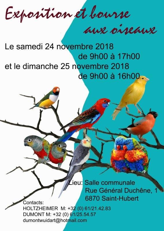 Expo-bourse Saint-Hubert [24-25 novembre 2018] Saint-10