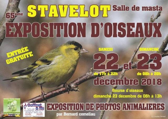 Expo-bourse Stavelot 2018 + Expo photos animalières [22-23 décembre] Stavel10