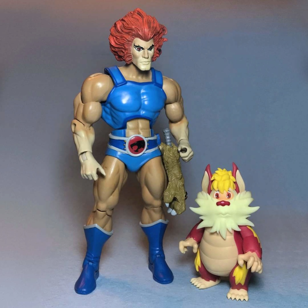 Cosmocats / Thundercats (Mattel) nouvelle gamme 2016 - Page 17 34584010