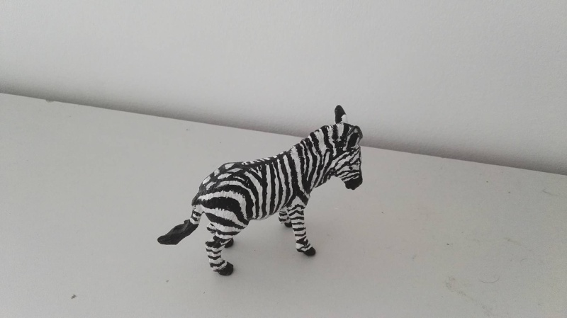 aaa donkey to ...custom mountain zebra ... 12887310