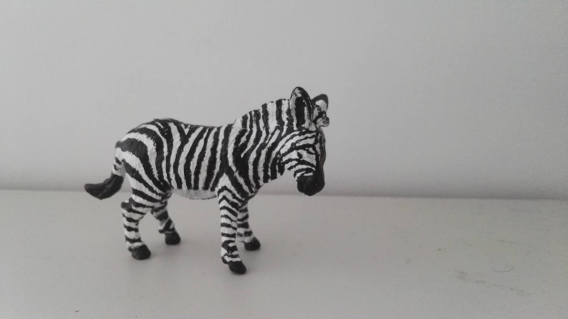 aaa donkey to ...custom mountain zebra ... 12899310