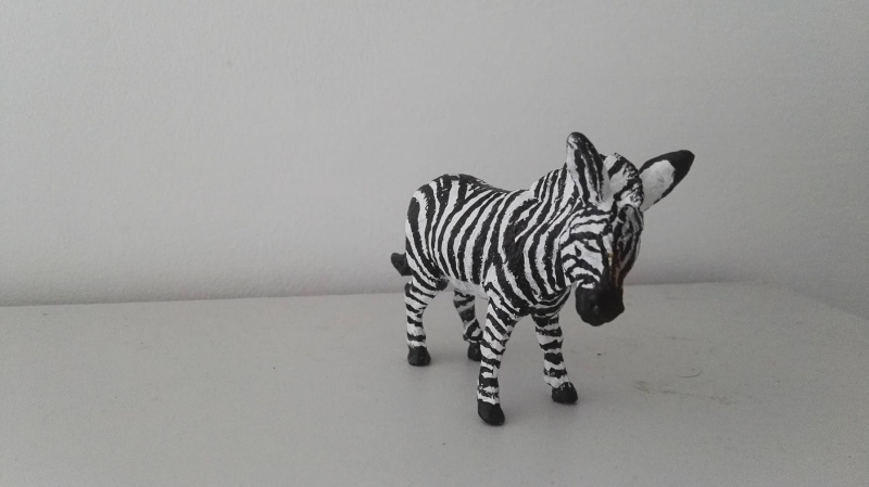 aaa donkey to ...custom mountain zebra ... 12903810