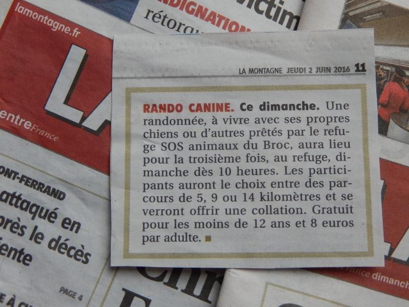 Rando'Chien 3! Dscn9611