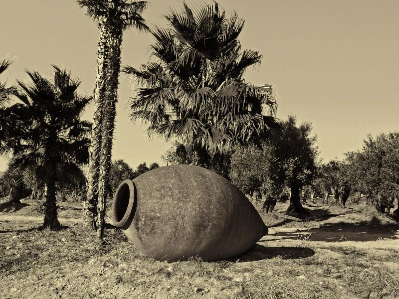 Le pot P1020113