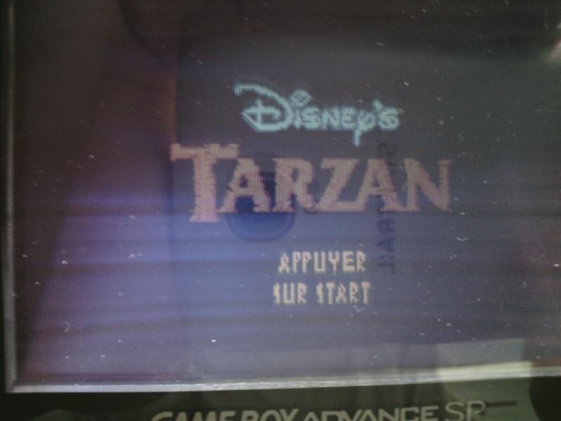 Tarzan Img_2120