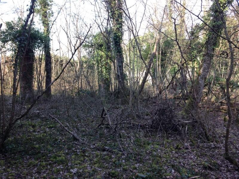 Aménagement terrain de cross 26 et27 mars 2016 Avant_10