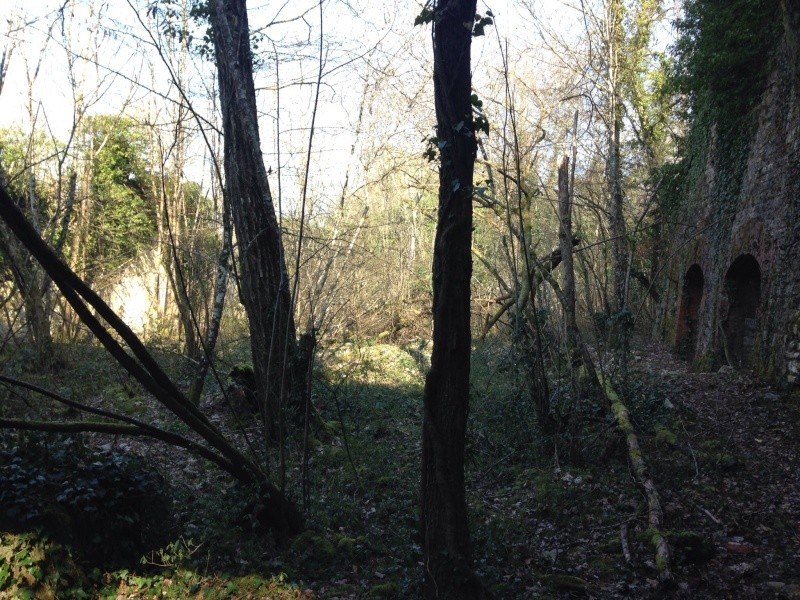 Aménagement terrain de cross 26 et27 mars 2016 Avant_14