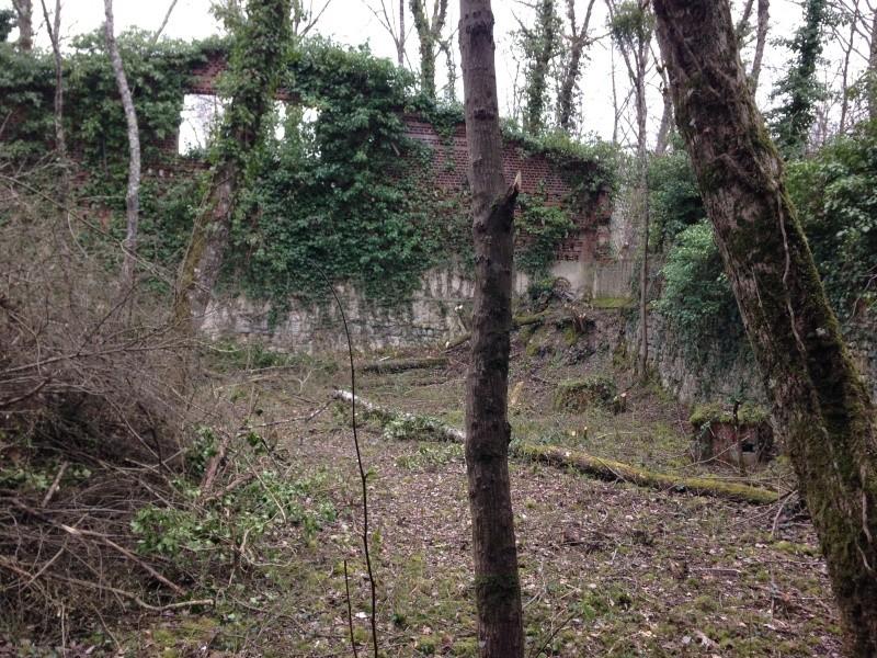 Mercredi 30 mars Sécurisation de la Ruine Img_3713