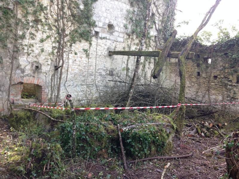 Mercredi 30 mars Sécurisation de la Ruine Img_3721