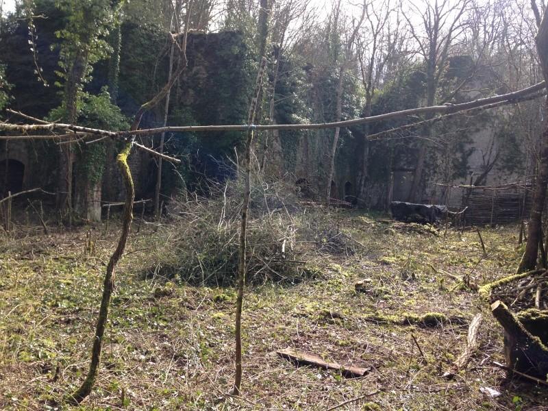 Mercredi 30 mars Sécurisation de la Ruine Img_3723
